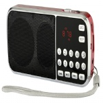 Portable mini speaker with fm radio